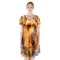 Welch Terrier Short Sleeve V-neck Flare Dress