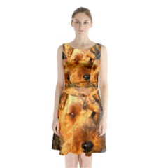 Welch Terrier Sleeveless Chiffon Waist Tie Dress