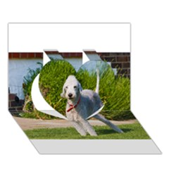 Bedlington Terrier Full Heart 3D Greeting Card (7x5)