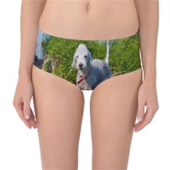 Bedlington Terrier Full Mid-Waist Bikini Bottoms