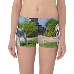 Bedlington Terrier Full Reversible Boyleg Bikini Bottoms
