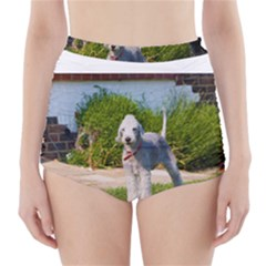 Bedlington Terrier Full High-Waisted Bikini Bottoms