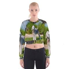 Bedlington Terrier Full Women s Cropped Sweatshirt