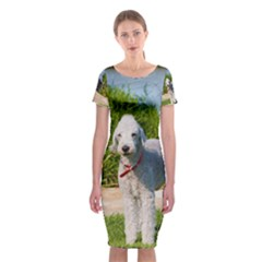Bedlington Terrier Full Classic Short Sleeve Midi Dress