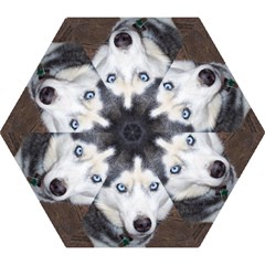 Siberian Husky Blue Eyed Mini Folding Umbrellas
