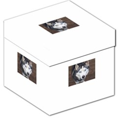 Siberian Husky Blue Eyed Storage Stool 12