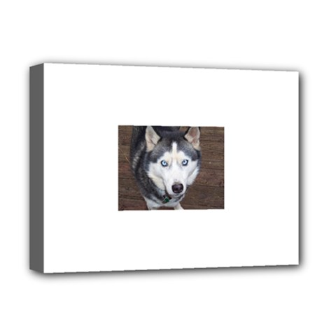 Siberian Husky Blue Eyed Deluxe Canvas 16  x 12