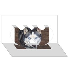 Siberian Husky Blue Eyed Twin Hearts 3D Greeting Card (8x4)