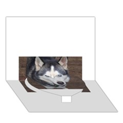 Siberian Husky Blue Eyed Heart Bottom 3D Greeting Card (7x5)