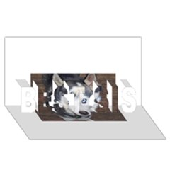 Siberian Husky Blue Eyed BEST SIS 3D Greeting Card (8x4)