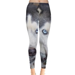Siberian Husky Blue Eyed Leggings
