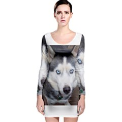 Siberian Husky Blue Eyed Long Sleeve Bodycon Dress
