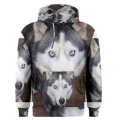 Siberian Husky Blue Eyed Men s Pullover Hoodie