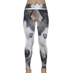 Siberian Husky Blue Eyed Classic Yoga Leggings