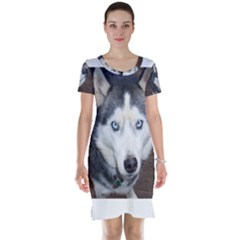 Siberian Husky Blue Eyed Short Sleeve Nightdress