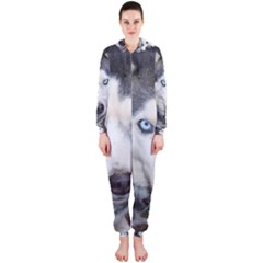 Siberian Husky Blue Eyed Hooded Jumpsuit (Ladies)