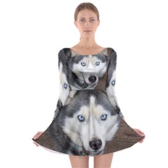 Siberian Husky Blue Eyed Long Sleeve Skater Dress