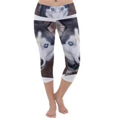 Siberian Husky Blue Eyed Capri Yoga Leggings