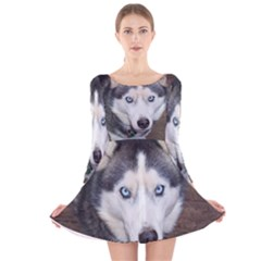 Siberian Husky Blue Eyed Long Sleeve Velvet Skater Dress
