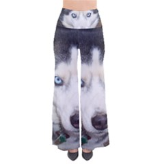 Siberian Husky Blue Eyed Pants