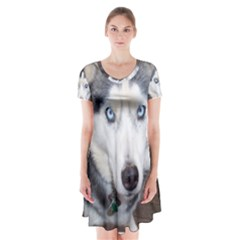 Siberian Husky Blue Eyed Short Sleeve V-neck Flare Dress