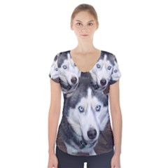 Siberian Husky Blue Eyed Short Sleeve Front Detail Top