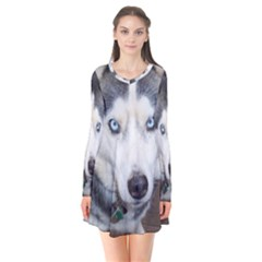 Siberian Husky Blue Eyed Flare Dress