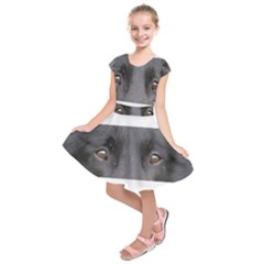 Belgian Groenendael Eyes Kids  Short Sleeve Dress