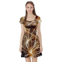 Star Golden Christmas Connection Short Sleeve Skater Dress