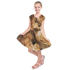 Brown Beige Abstract Painting Kids  Short Sleeve Dress