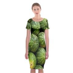 Food Summer Pattern Green Watermelon Classic Short Sleeve Midi Dress