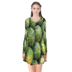 Food Summer Pattern Green Watermelon Flare Dress