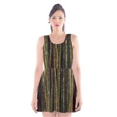 Green And Brown Bamboo Trees Scoop Neck Skater Dress