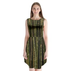 Green And Brown Bamboo Trees Sleeveless Chiffon Dress