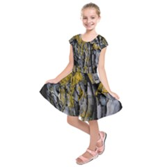 Grey Yellow Stone Kids  Short Sleeve Dress