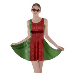 Background Christmas Curtain Red Skater Dress