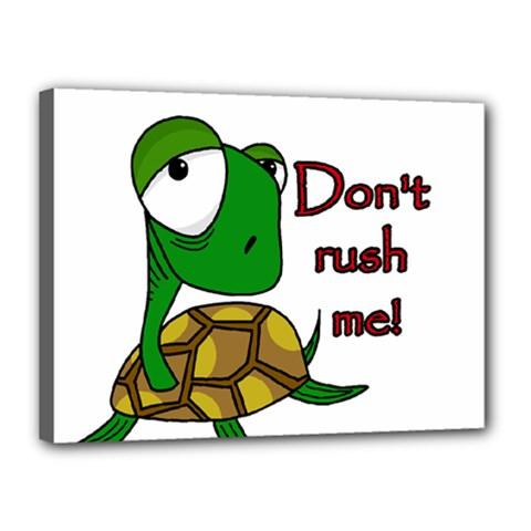Turtle Joke Canvas 16  X 12