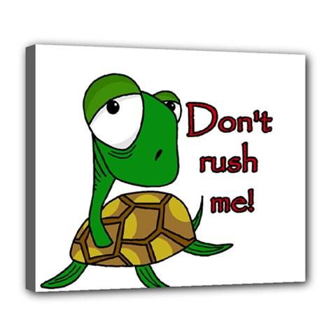 Turtle Joke Deluxe Canvas 24  X 20