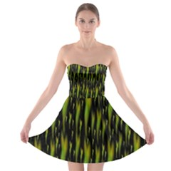 Tulips For The Soul Strapless Bra Top Dress