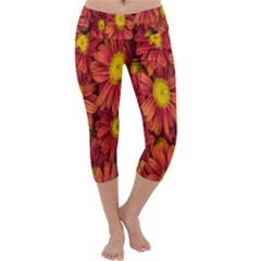Flowers Nature Plants Autumn Affix Capri Yoga Leggings