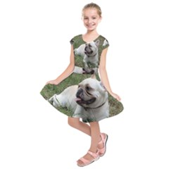 French Bulldog White Full Kids  Short Sleeve Dress