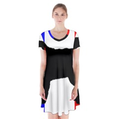 Basset Fauve De Bretagne Silo On Flag Short Sleeve V Neck Flare Dress