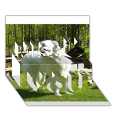 Great Pyrenees Full 2 Miss You 3d Greeting Card (7x5)