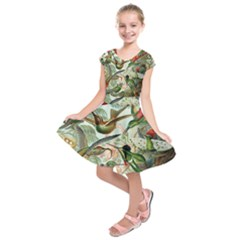 Beautiful Bird Kids  Short Sleeve Dress