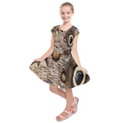 Butterfly Wing Detail Kids  Short Sleeve Dress