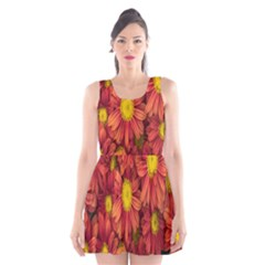 Flowers Nature Plants Autumn Affix Scoop Neck Skater Dress