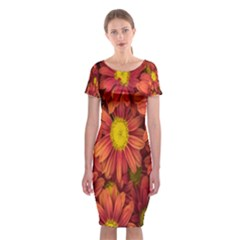 Flowers Nature Plants Autumn Affix Classic Short Sleeve Midi Dress