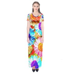 Colorful Daisy Garden Short Sleeve Maxi Dress