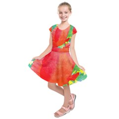 Lovely Red Poppy And Blue Dots Kids  Short Sleeve Dress