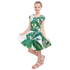 Pachira Leaves  Kids  Short Sleeve Dress